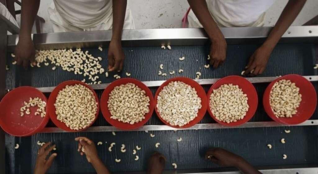 Emirates, cashew nuts, dubai, india
