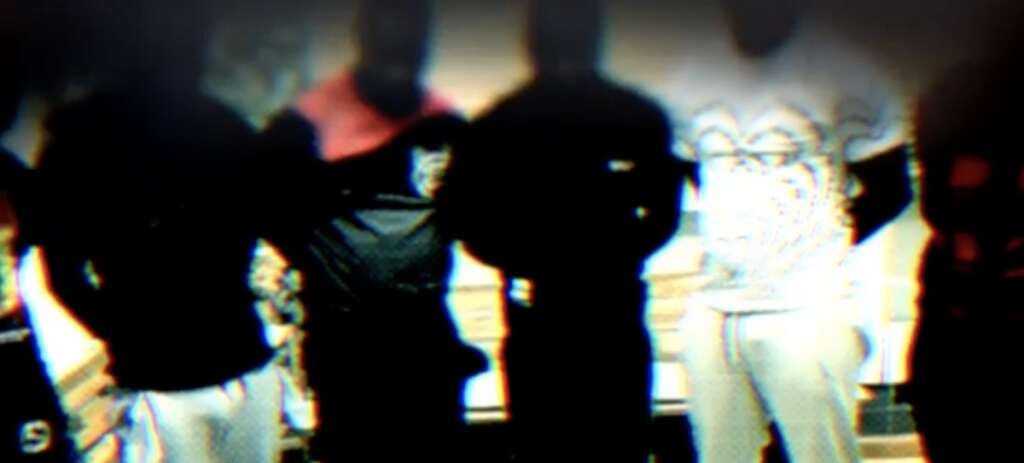 dubai police, crime bust, operation fox hunt, online fraud, dubai
