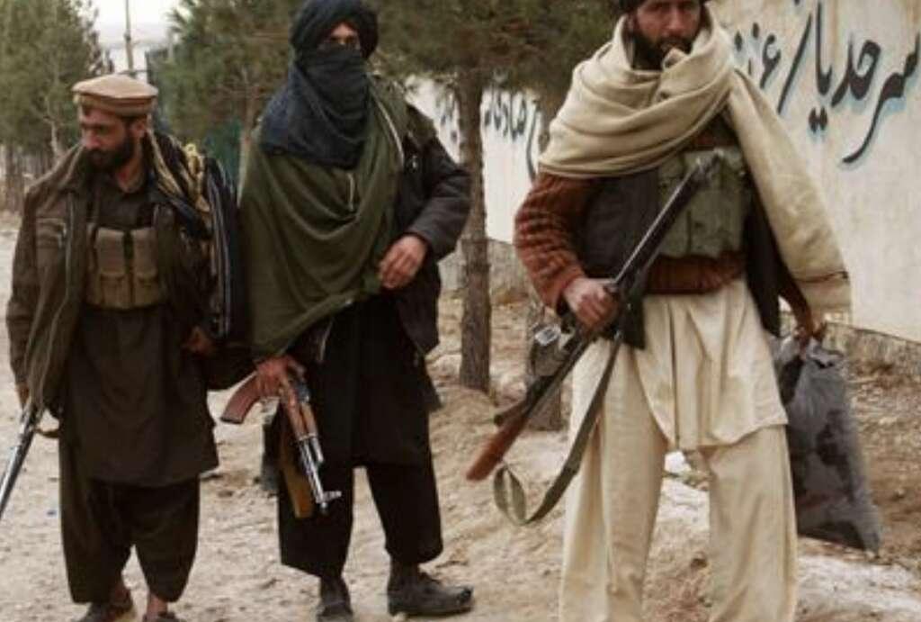 taliban, afghan, kabul, militants surrender