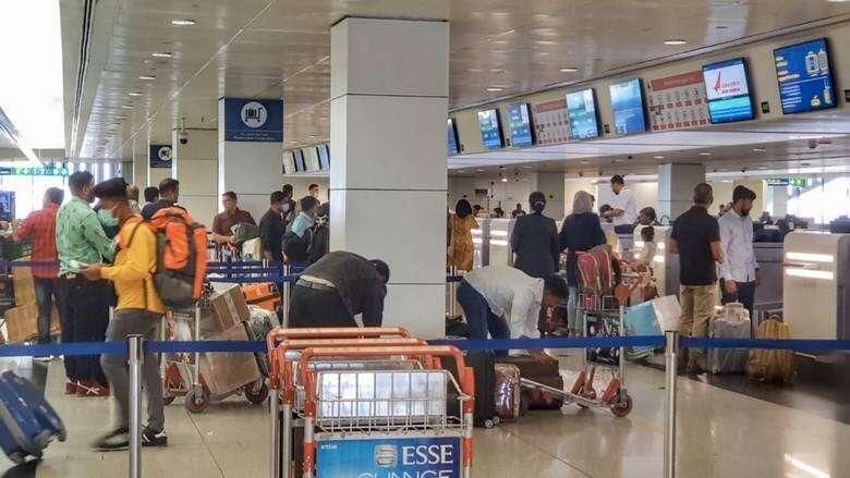 uae fights covid19, india lockdown, coronavirus pandemic